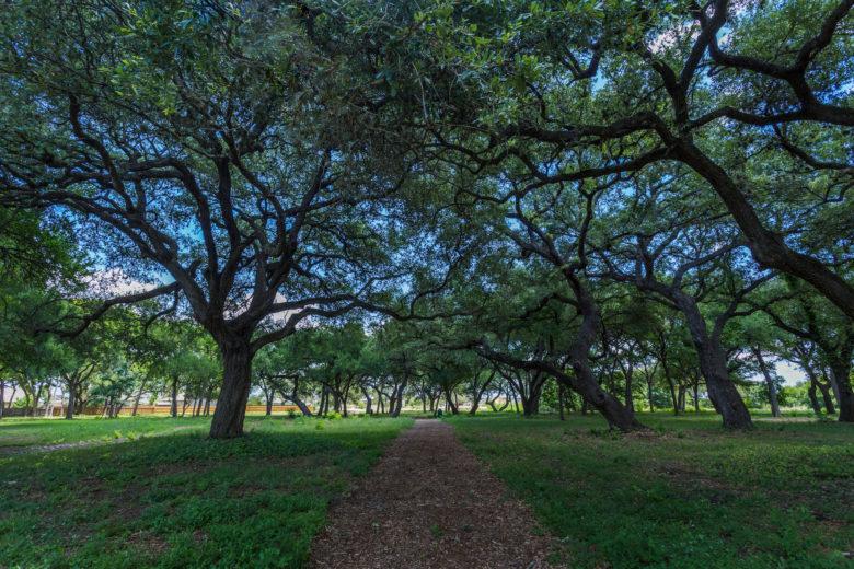 Heritage Oaks Park Trail